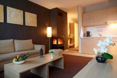Apart-hotel Lucky Bansko SPA & Relax | Slika Delux dnevna soba