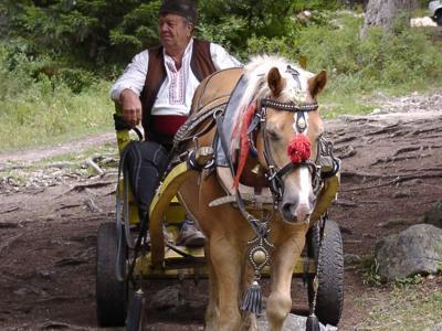 Tradicije u Banskom i Pirinu