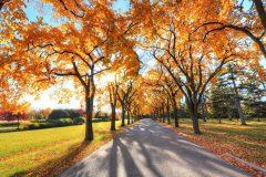 jesen u Banskom