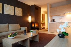 Apart-hotel Lucky Bansko SPA & Relax |  Apartman Delux dnevna soba i kuhinja