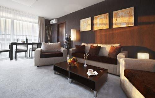 Apart-hotel Lucky Bansko SPA & Relax | Slika kauča apartman Executive