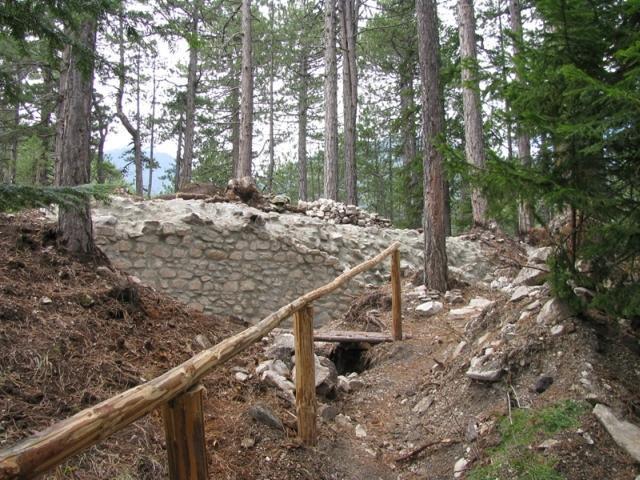 Staza kroz šumu u Banskom   Lucky Bansko SPA & Relax